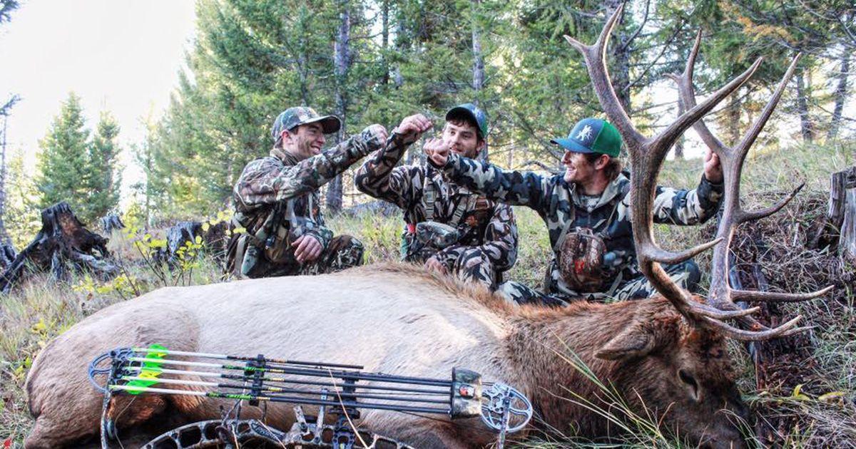 Effective multiperson calling strategies for elk elk