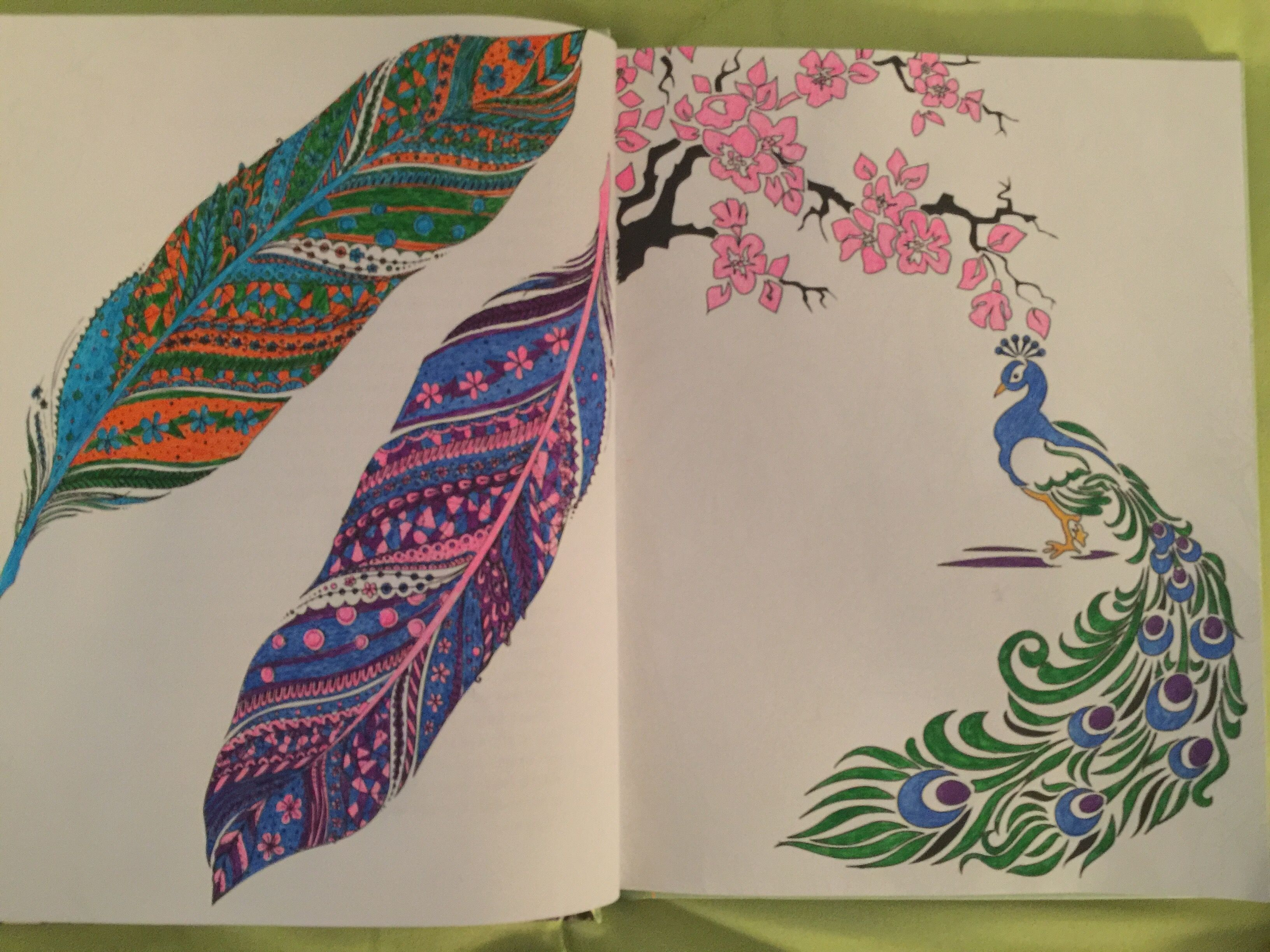I Colored The First Two Pages 3 1 2 Book Natural Wonders By