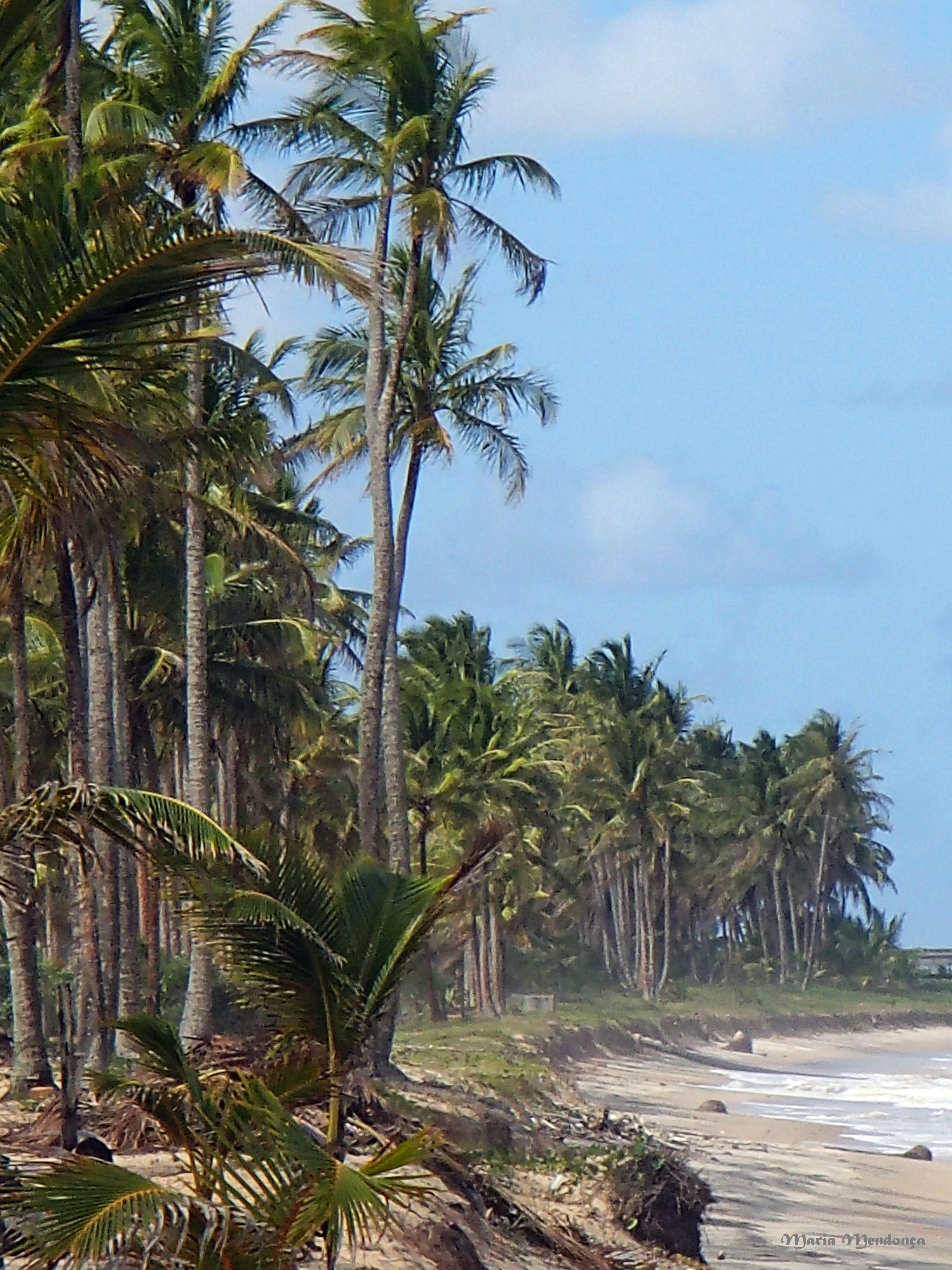Praia de Mojíquiçaba - Ba