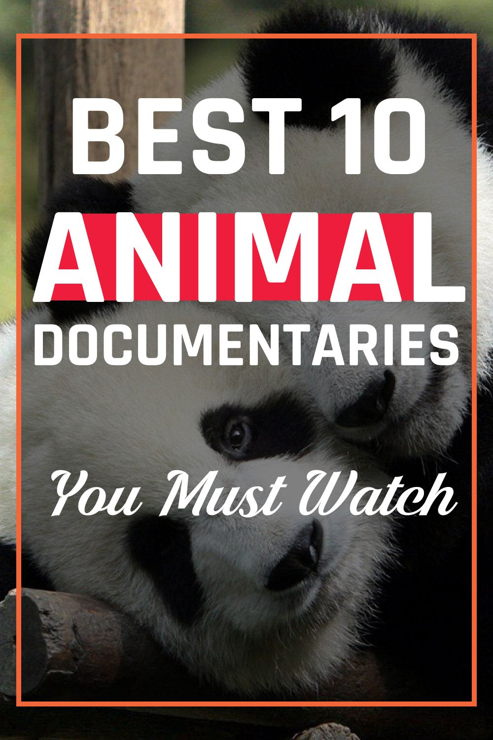 Best 10 Animal Documentaries You Must Watch Scary