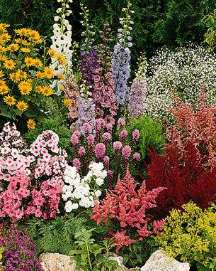 Perennial Flower Garden Ideas front yard perennial gardens google search Free Flower Garden Plans Easy Perennial Flower Garden Ideas Photograph Thriving Perennia