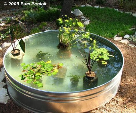 Made fish pond filter how to make a container pond in a for Big pond filter