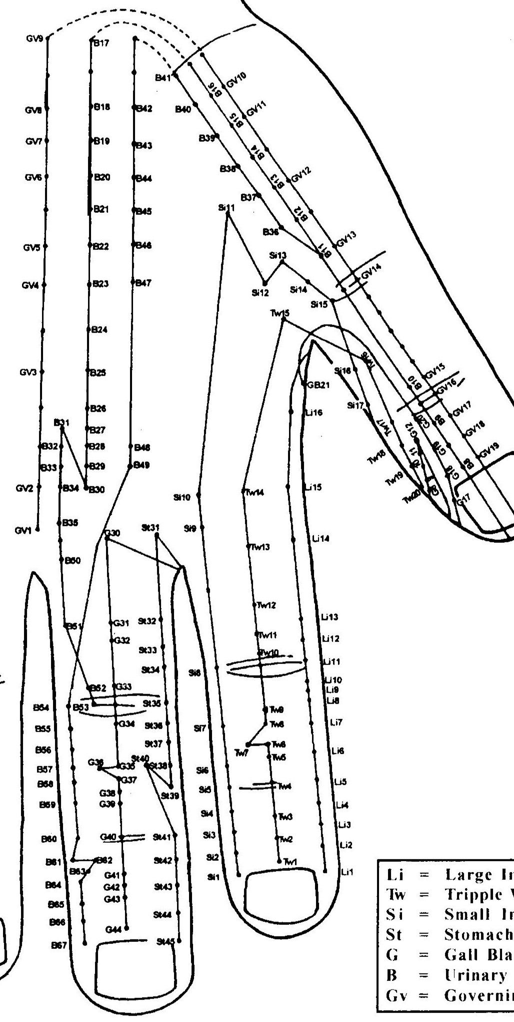Pin On Advance Acupuncture Acupressure Training And
