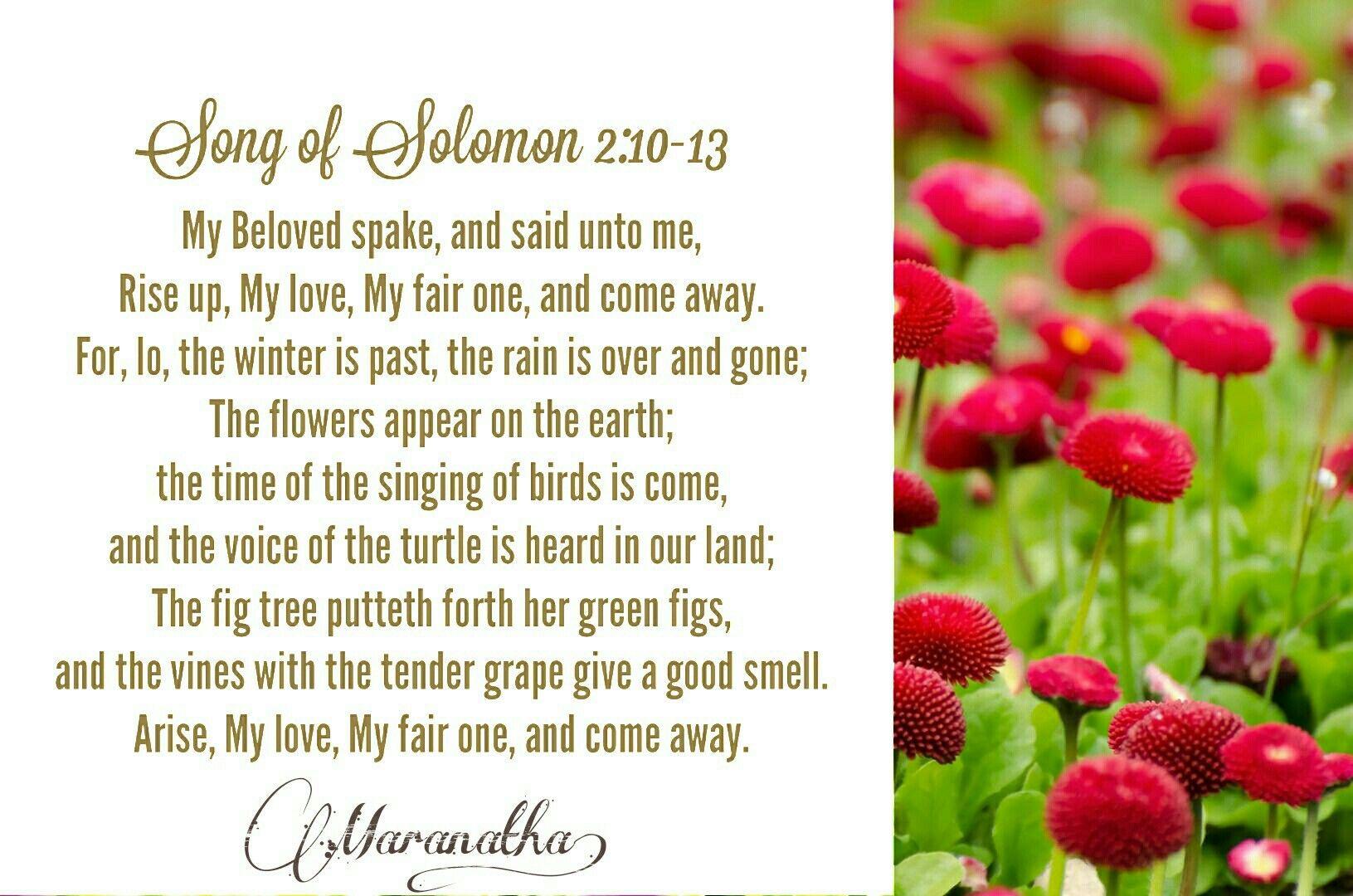 Song of Solomon 2:10-13 KJV