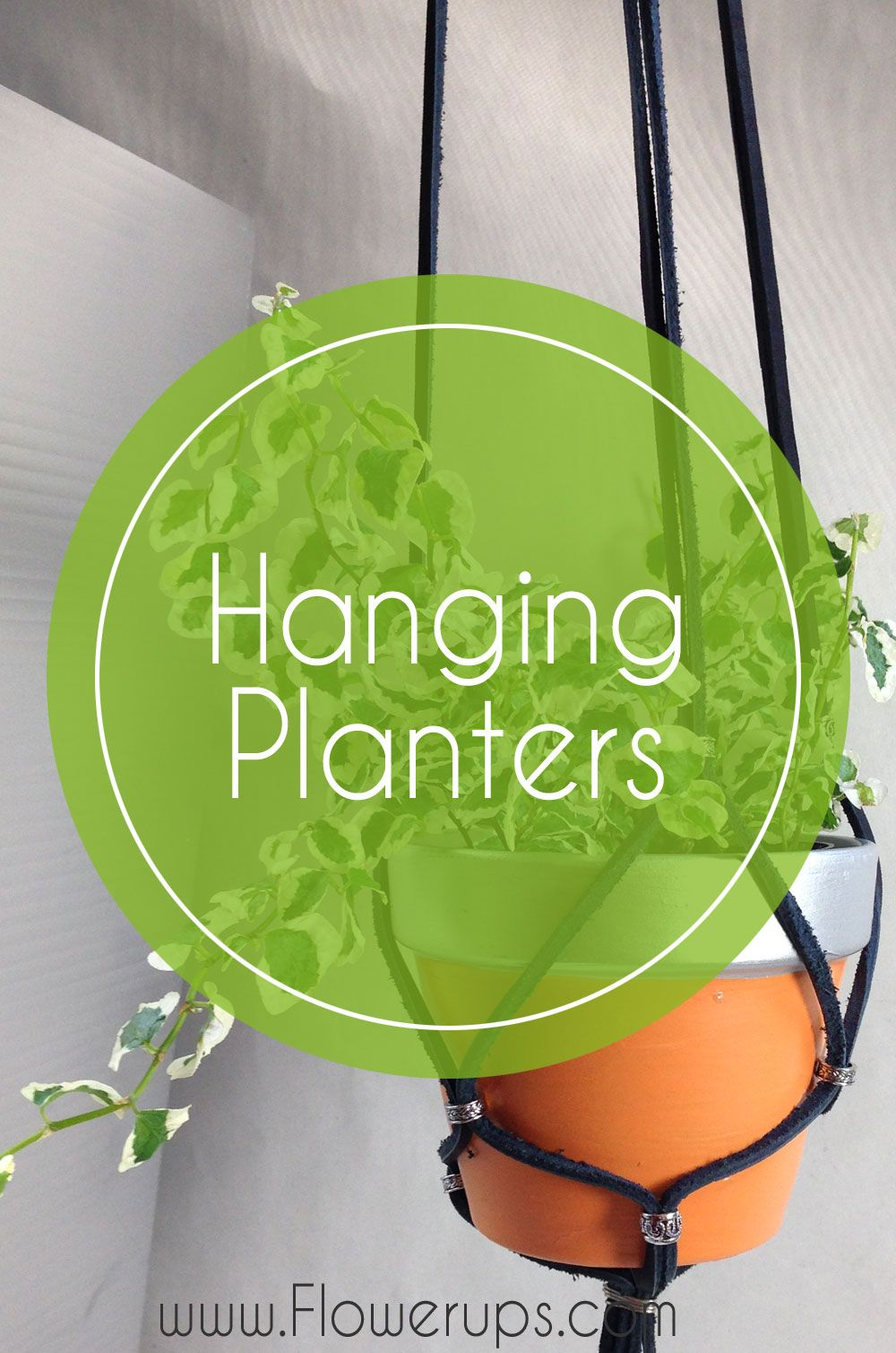Hanging planters, Caring for hanging plants, house plants, indoor decor, green thumb, indoor gardening