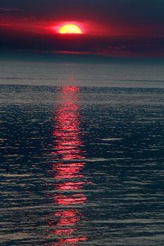 Como diz um amigo virtual Marcos Sérgio: As cores são o sorriso de Deus! E eu completo dizendo: A natureza tem perfeições que mostram que ELA é a imagem de Deus! Dê valor ao que não tem preço!   Hoffmaster Evening Light