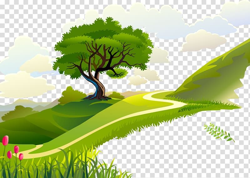 Green Tree On Mountain Morning Quotation Forest Transparent Background Png Clipart Transparent Background Bamboo Background Clip Art