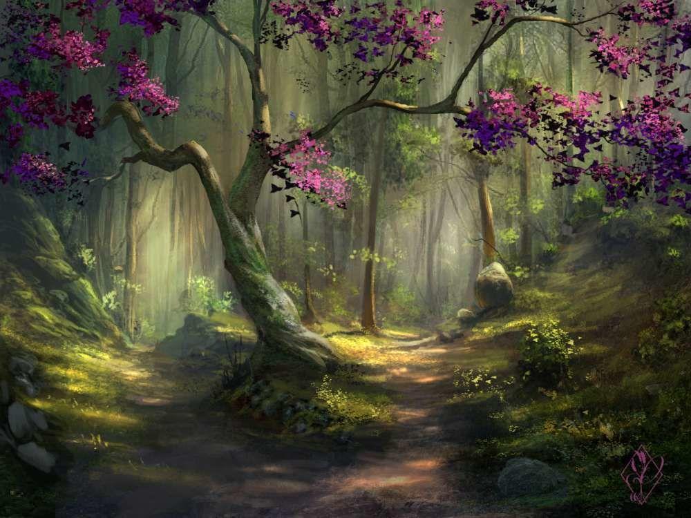 Forest Fantasy Art Landscapes