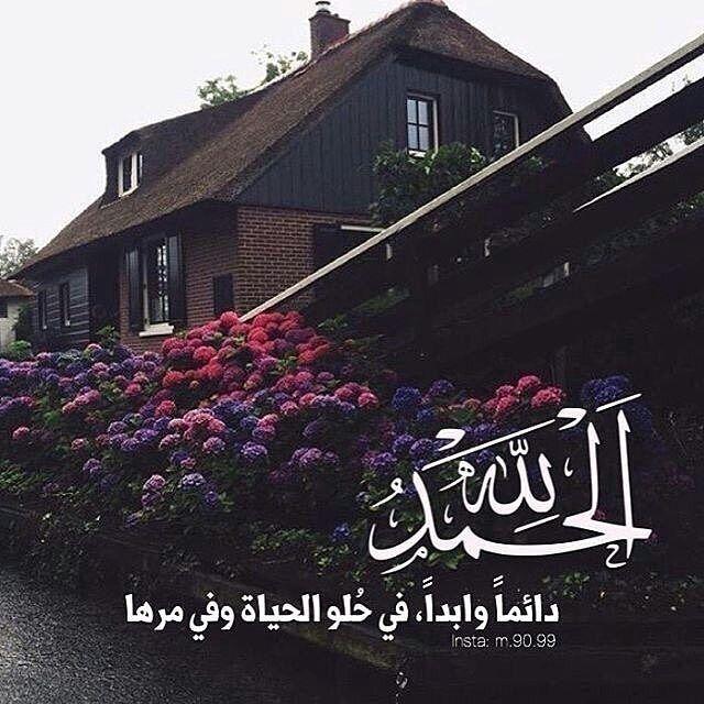 Thepug Islamic Pictures Islam Instagram
