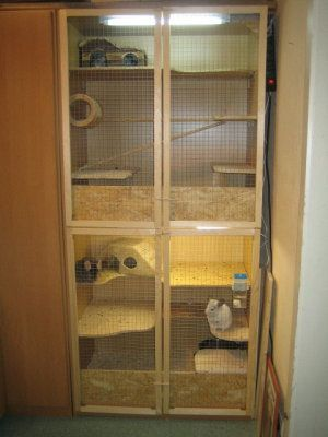 Pin On Cages Aquariums And Pet Ideas