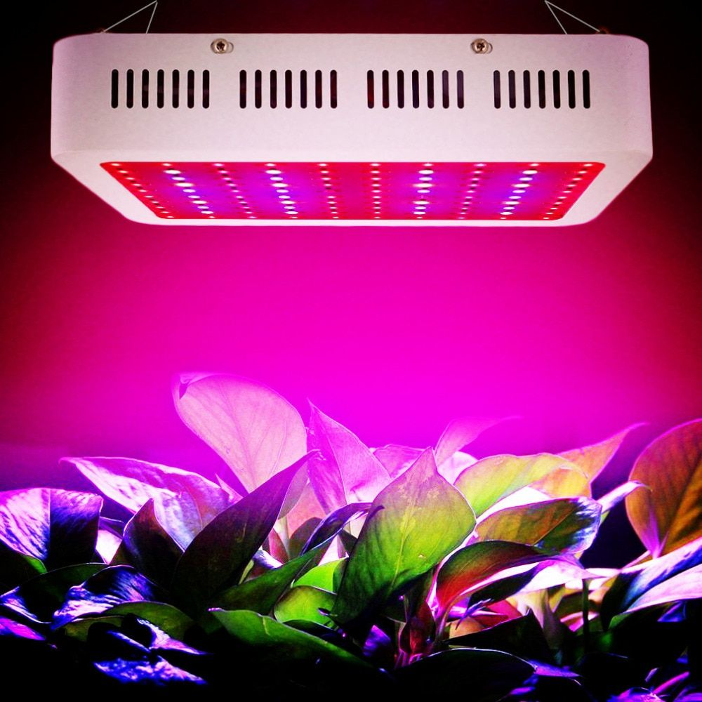 300w 1000w Led Grow Light 380 730nm Full Spectrum Led Plant Grow Light For Indoor Plants Flowering And Growing Grow Lights For Plants Led Grow Lights Grow Lights