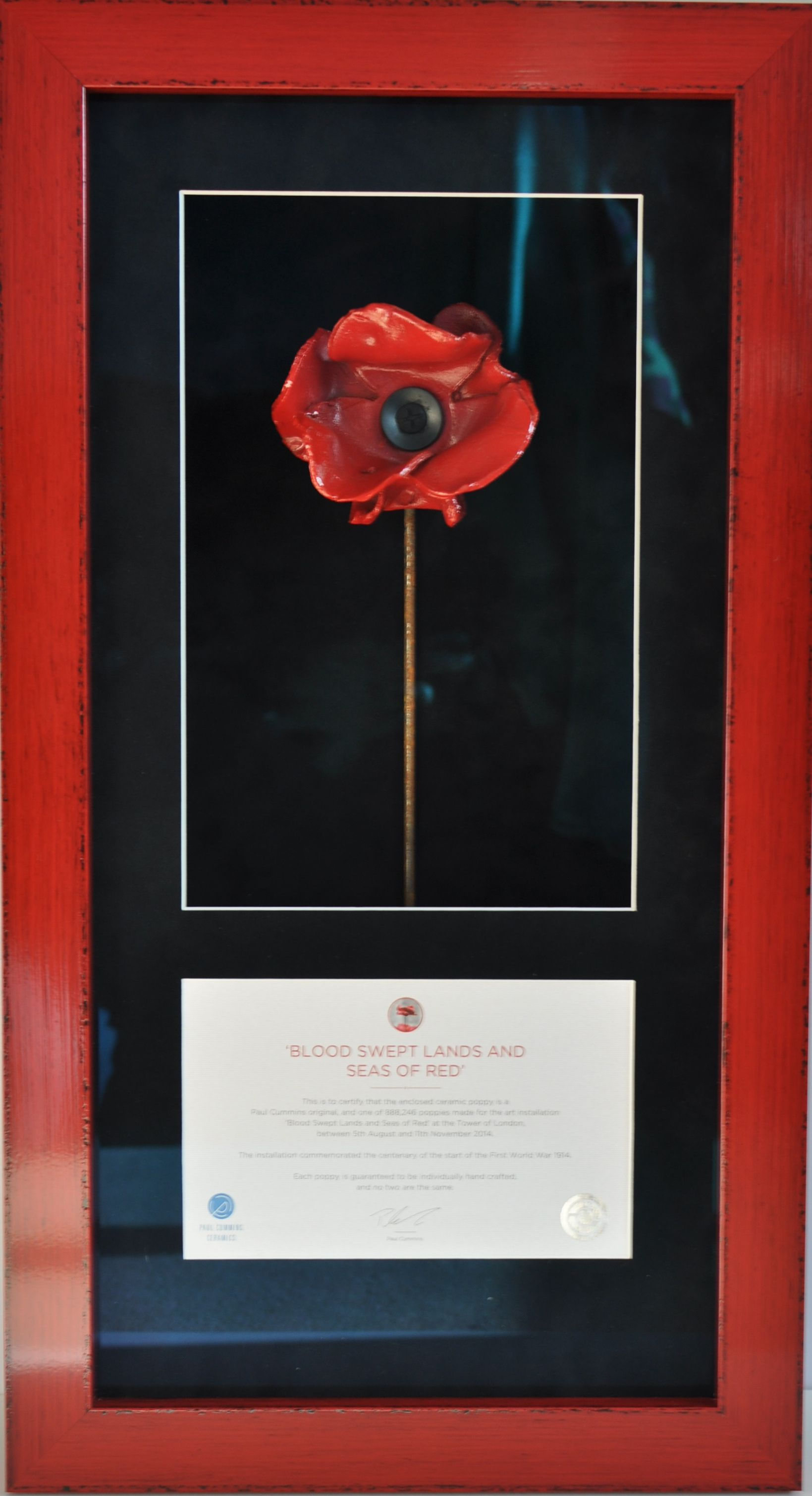POPPY DISPLAY FRAME FOR TOWER OF LONDON WW1 CERAMIC POPPY