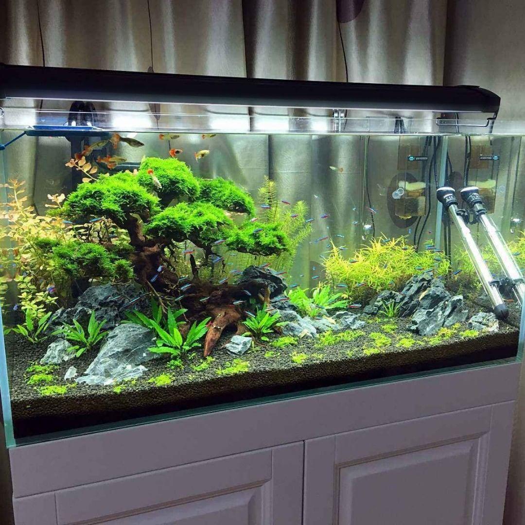 Display 120cm Led Fish Tank Lighting Lighting Lightingdesign Hand Blown Glass Chandelier Fish Tank Lights Blown Glass Chandelier