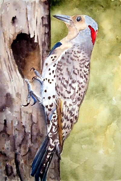Charlene M McGill WATERCOLOR
