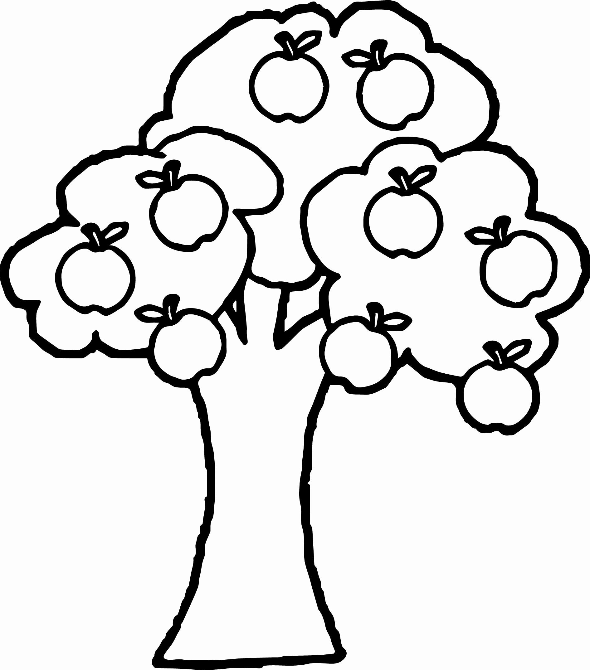 Apple Tree Coloring Page Lovely Apple Tree Drawing Apple Coloring Pages Tree Coloring Page Fruit Coloring Pages