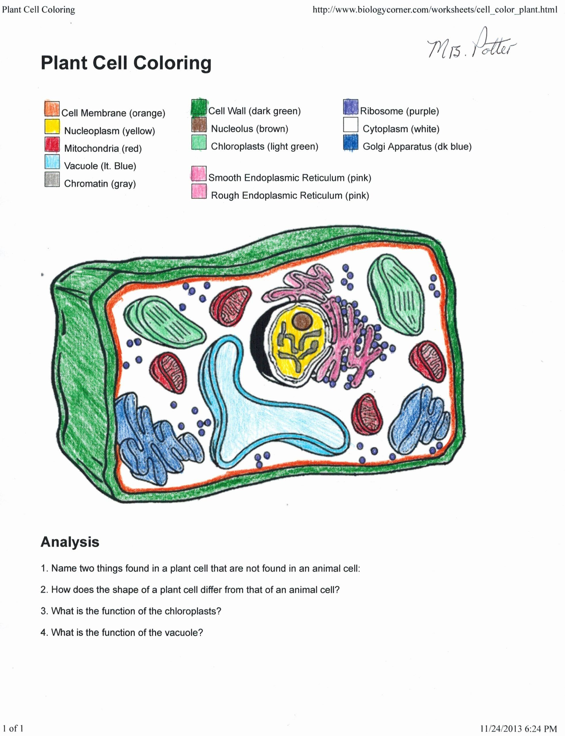 Animal Cell Coloring Worksheet Elegant Plant Cell Coloring Key 0 Plant Cell Coloring Key With Plant Cells Worksheet Animal Cells Worksheet Cells Worksheet