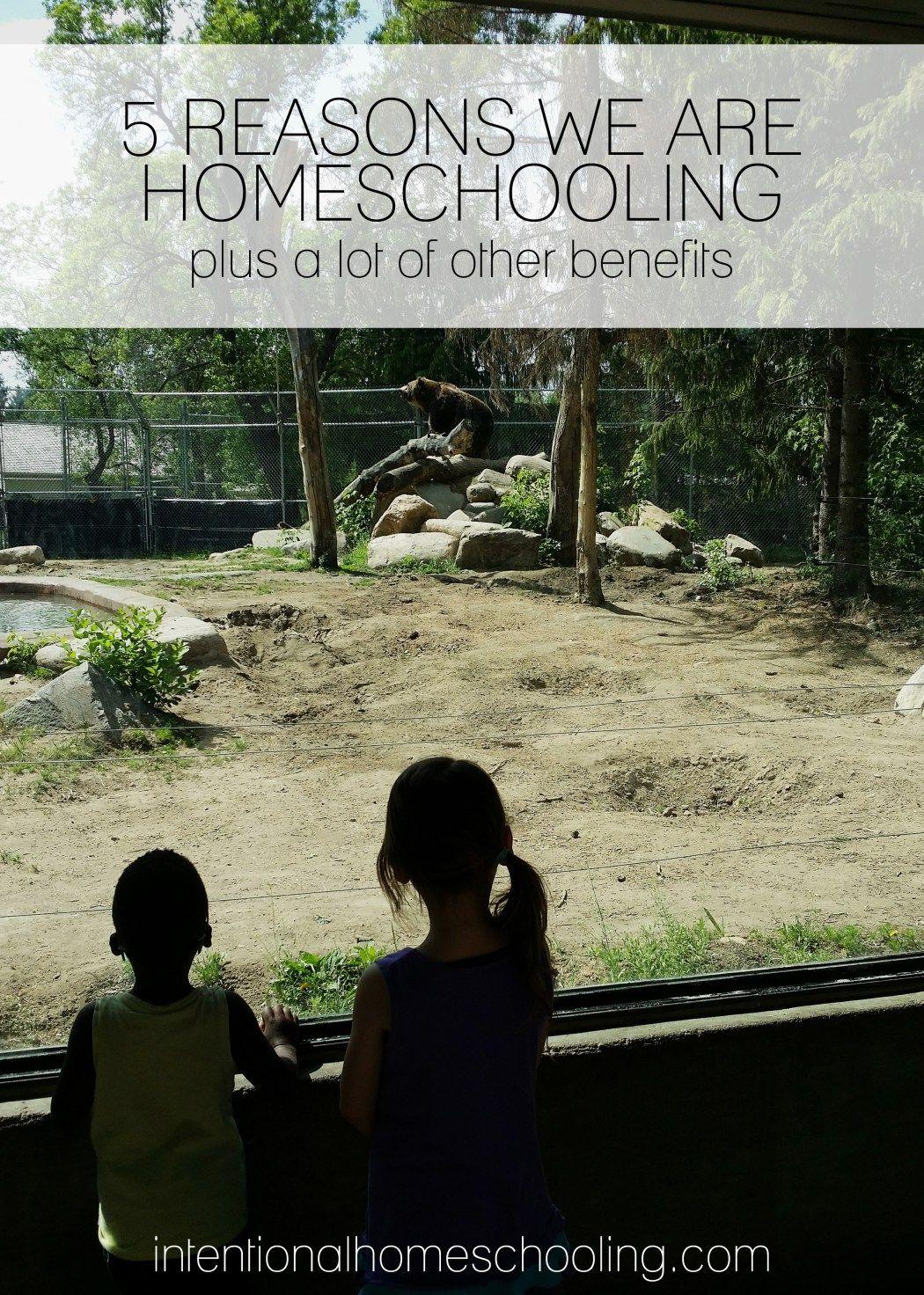 5 Reasons We Are Choosing To Homeschool