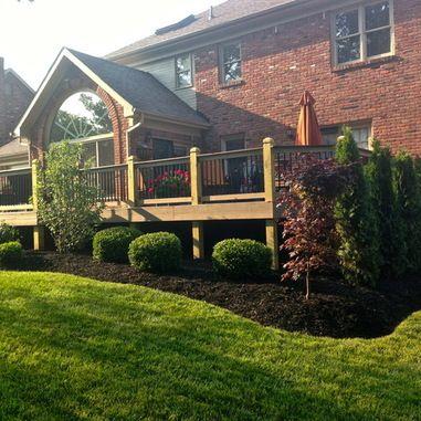Evergreen Bushes For Landscaping Around Deck Arborvitae