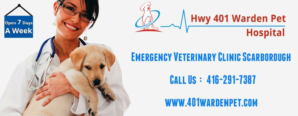 Hwy 401 Warden Pet Is A Emergency Veterinary Hospital Located In Scarborough Ontario Our Clinic Is Open 7 Days A W Pet Clinic Care Hospital Veterinary Clinic