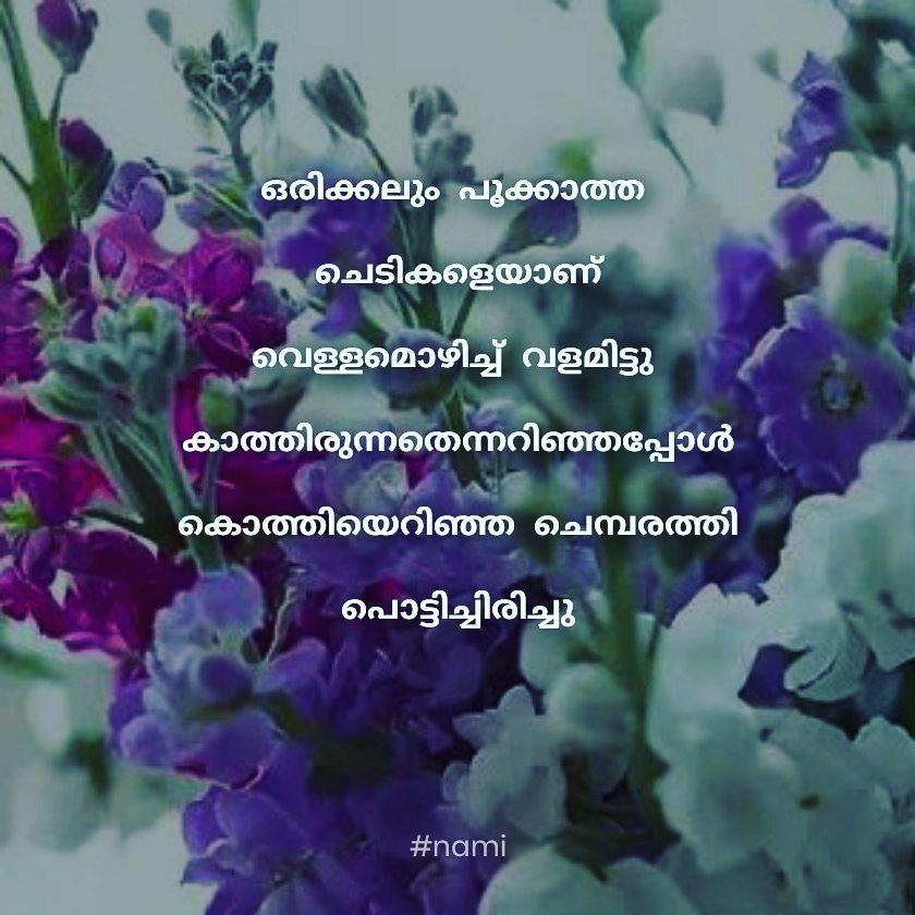Pin On Malayalam Quotes
