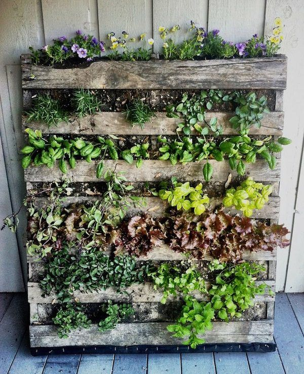 16 Genius Vertical Gardening Ideas For Small Urban Gardens Herb