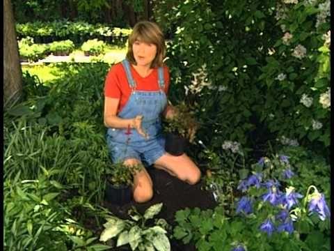 Rebecca\'s Garden Ep01 Basic Gardening - YouTube | Garden~how to ...
