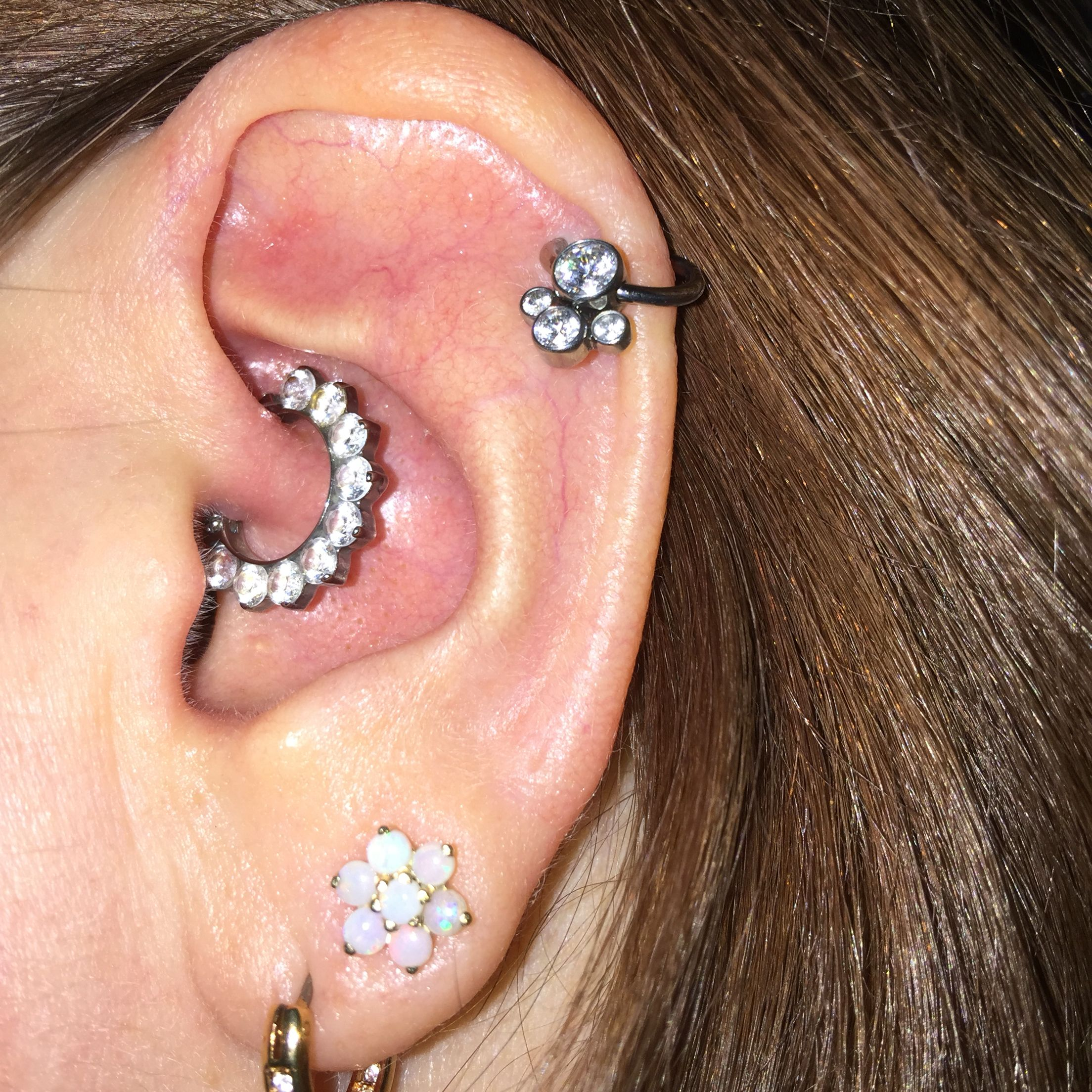 Nose piercing without earring  daithindustrialstrengthanatometalAdornpiercing  Piercings