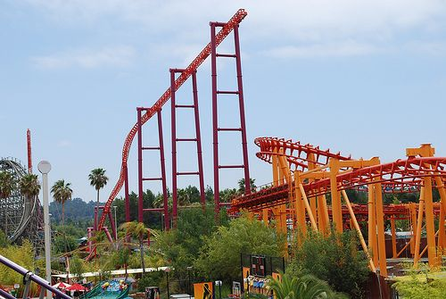Yahoo Login Roller Coaster Amusement Park Park