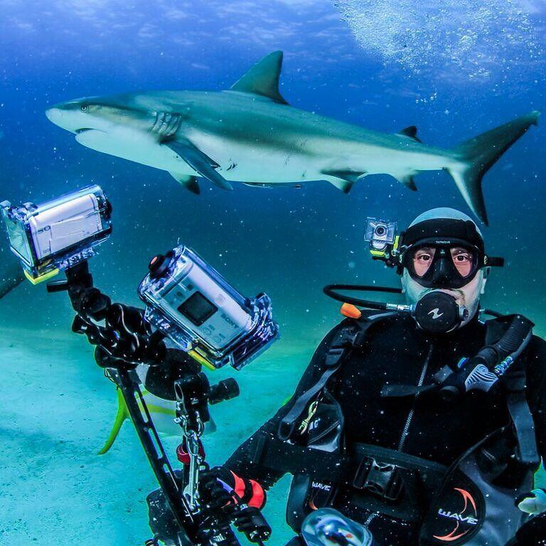 Shark Week!  via @actioncam on Instagram!