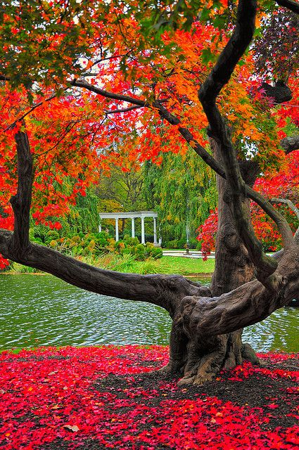 Autumn, Old Westbury Gardens, Long Island, New York