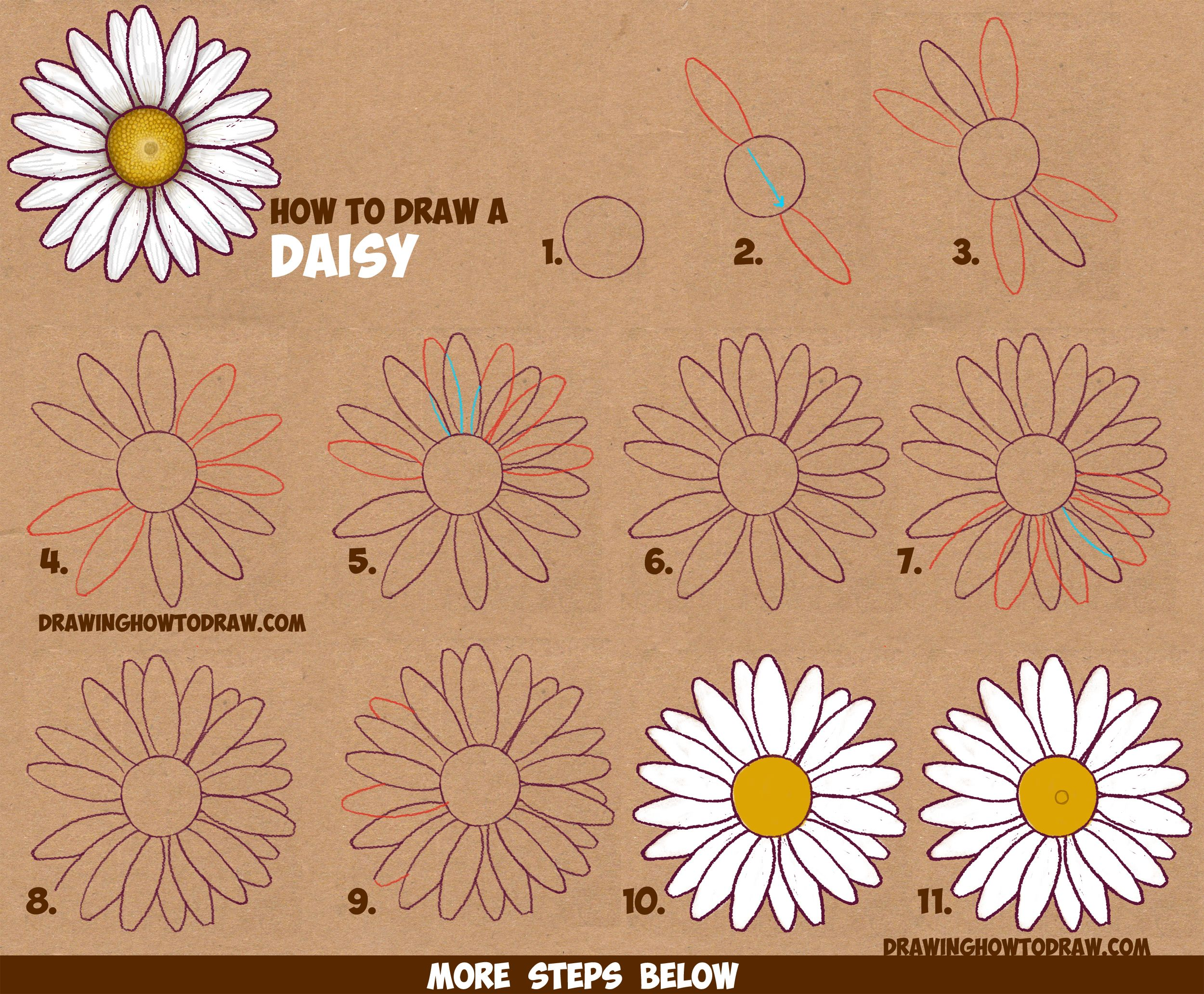 How To Draw A Daisy Flower Daisies In Easy Step By Step Drawing Instructions Tutorial For Beginners How To Draw Step By Step Drawing Tutorials Flower Drawing Tutorials Daisy Flower