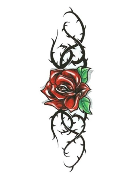Rose Thorn Tattoo : thorn, tattoo, Rose-with-black-thorny-vines-tattoo.jpg, (480×622), Thorn, Tattoo,, Tattoos
