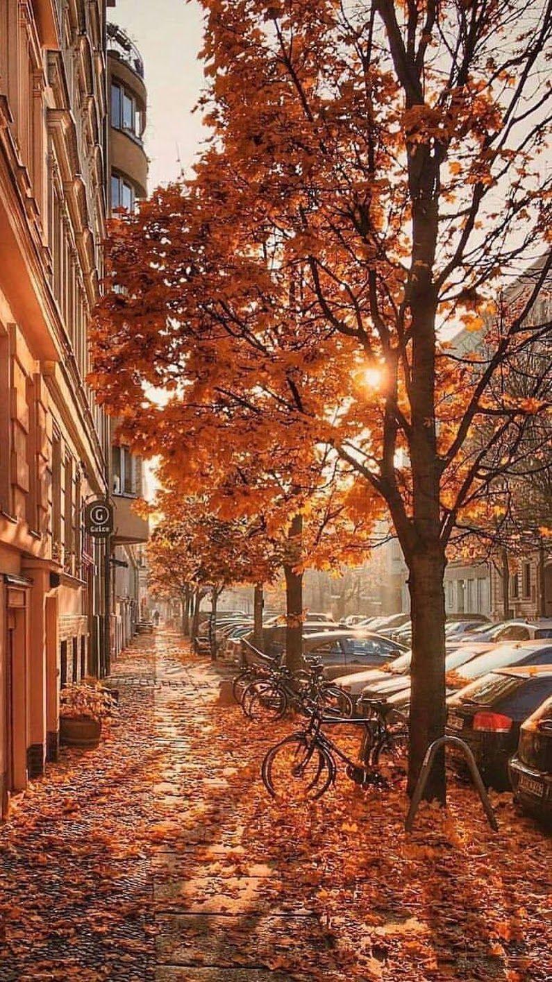 Foto Bello otoño Foto Bello otoño #autumnscenery