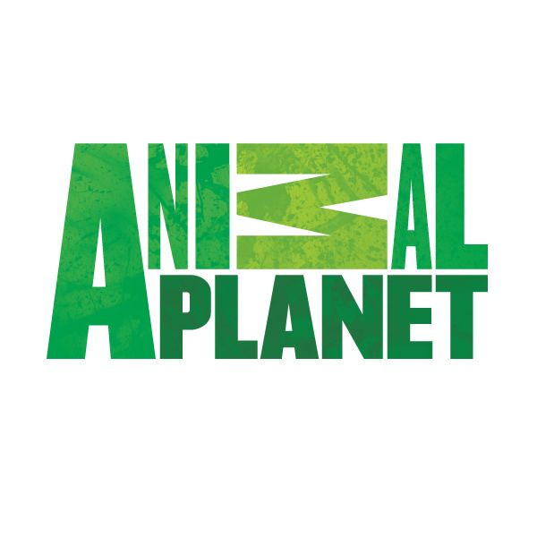 Animal Planet Stars To Attend Woofstockapl The Road To Puppy Bowl