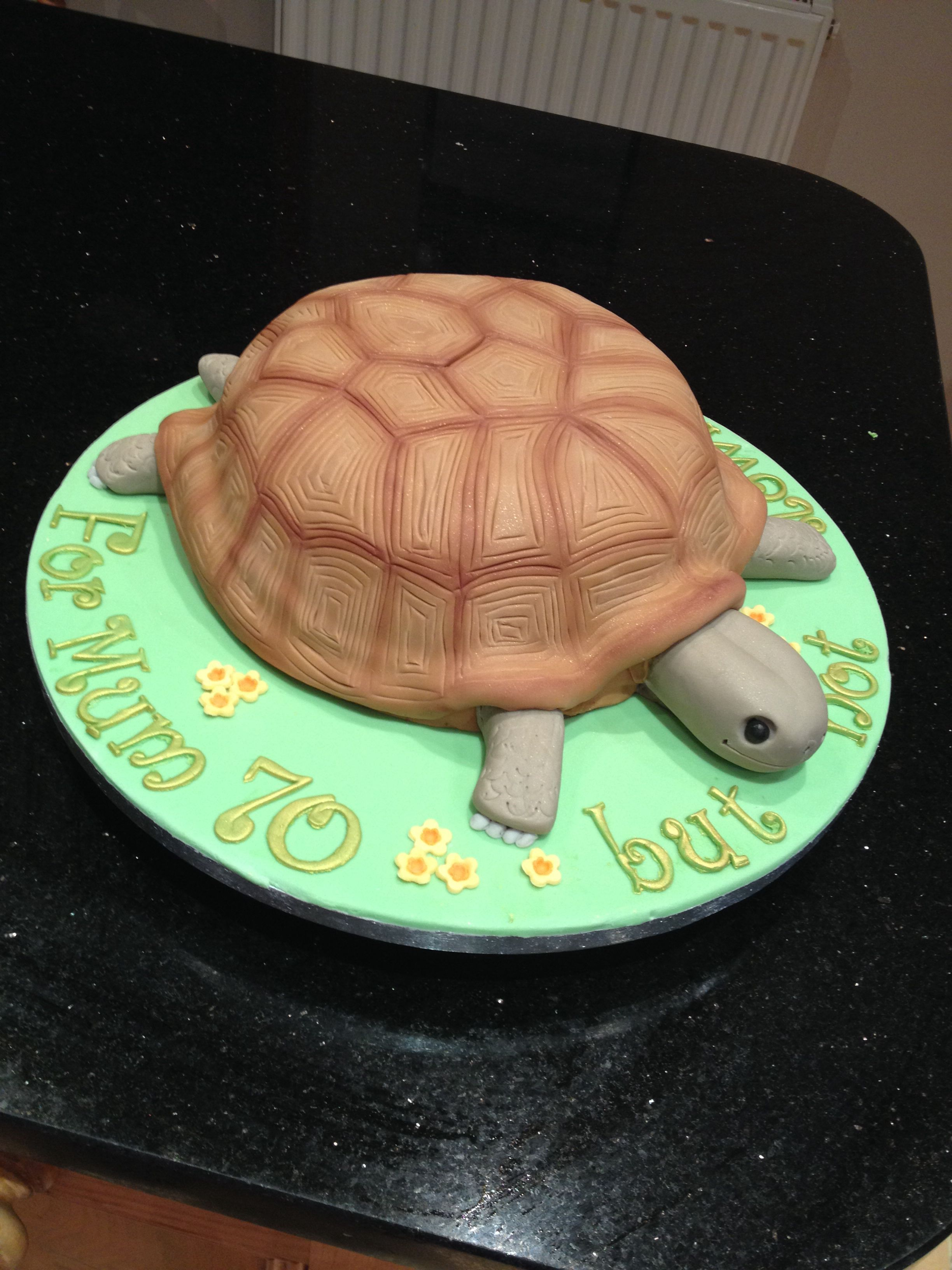 Tortoise cake Recipe step by step at home 24