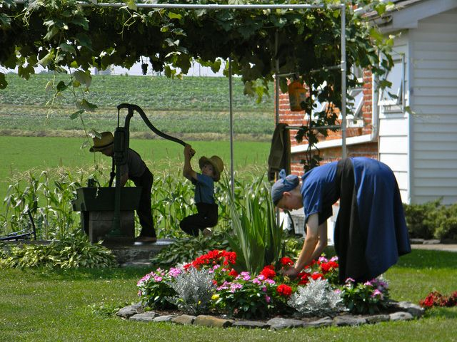 Pictures of amish life discover the simple life of the for Country farm simples