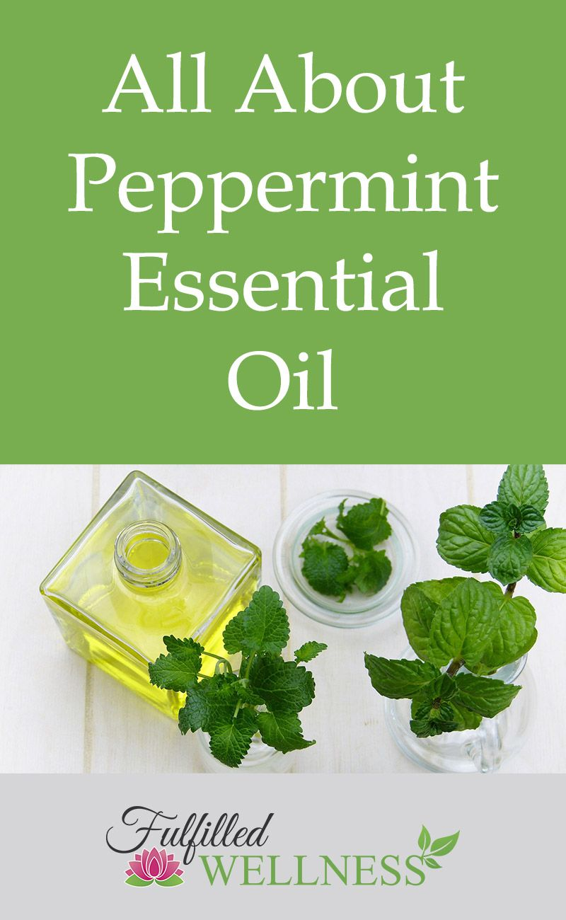 All About Peppermint Essential Oil Peppermint, Health