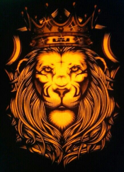 lebron james lion basketball pinterest nike soccer nike air
