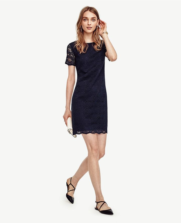 Navy lace dress work christmas