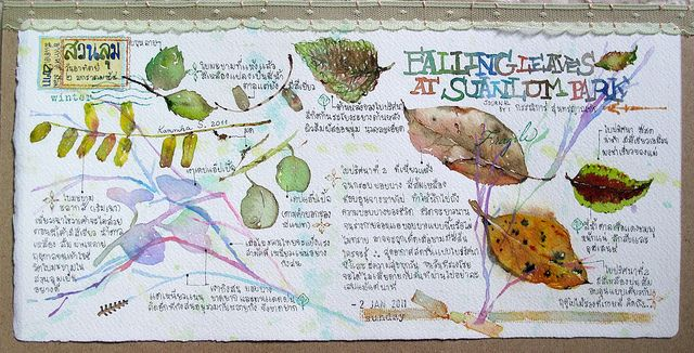 falling leaves by Bua S. Nature, journal, sketchbook, notebook, dairy, words and images, drawing.
