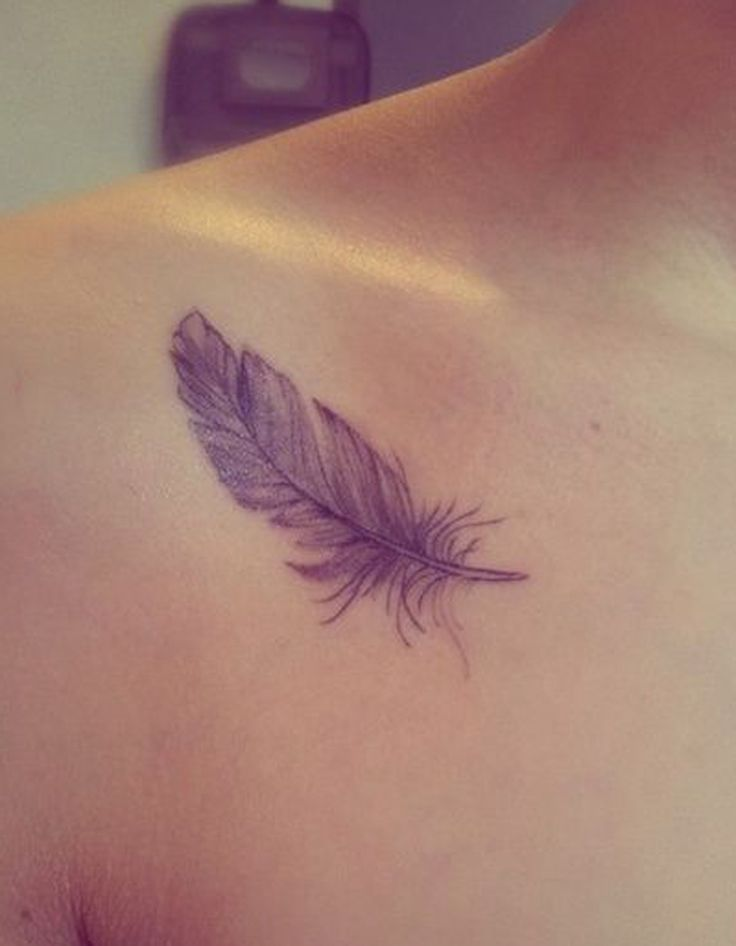 Feather Tattoo on Forearm – Donnelle Vervoort – Daily Pin Blog