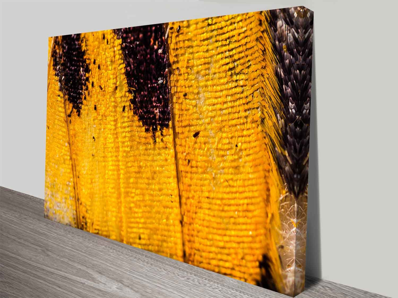 Butterfly Elena Kulikova Photo Canvas Wall Art Online Online Wall Art Canvas Photo Wall Custom Wall Art