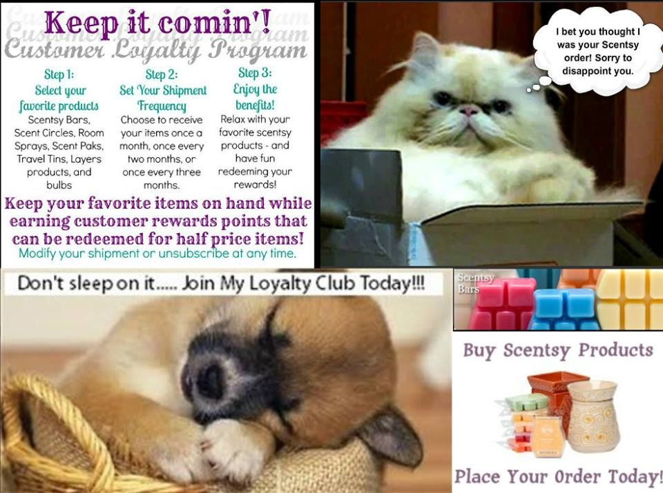 WE have a Wonderful Customer Rewards program with Scentsy