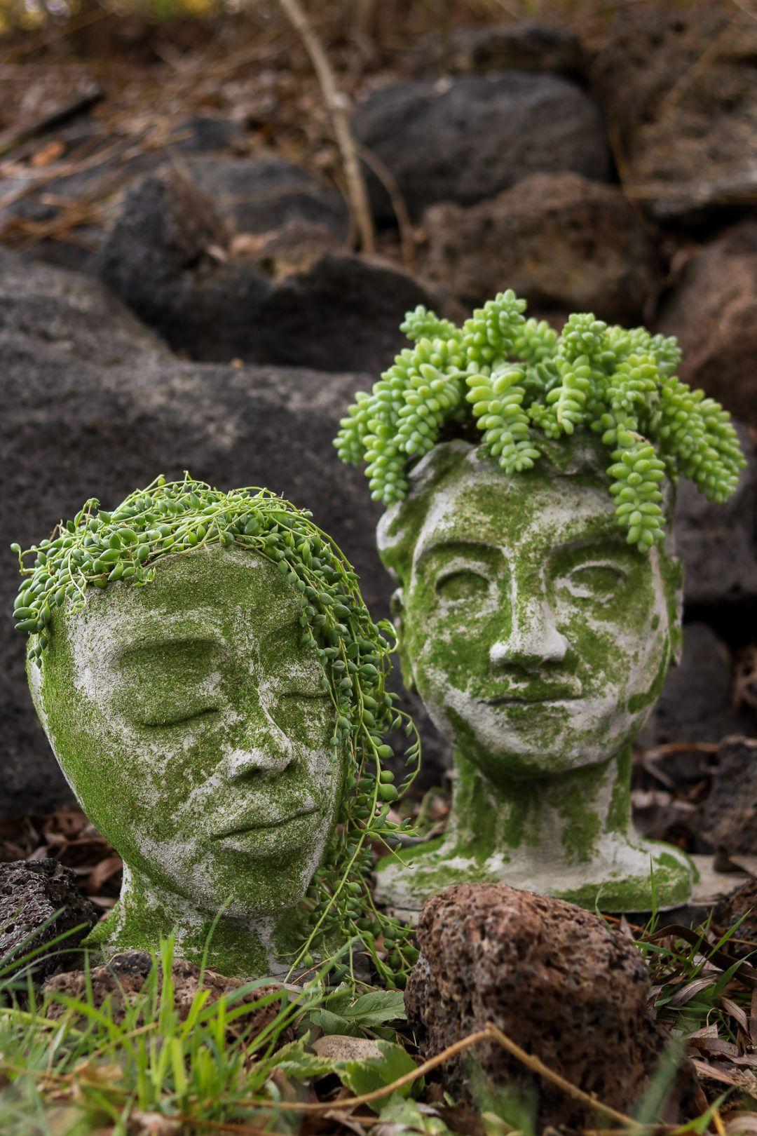 Diy head planter using concrete garden diys with images