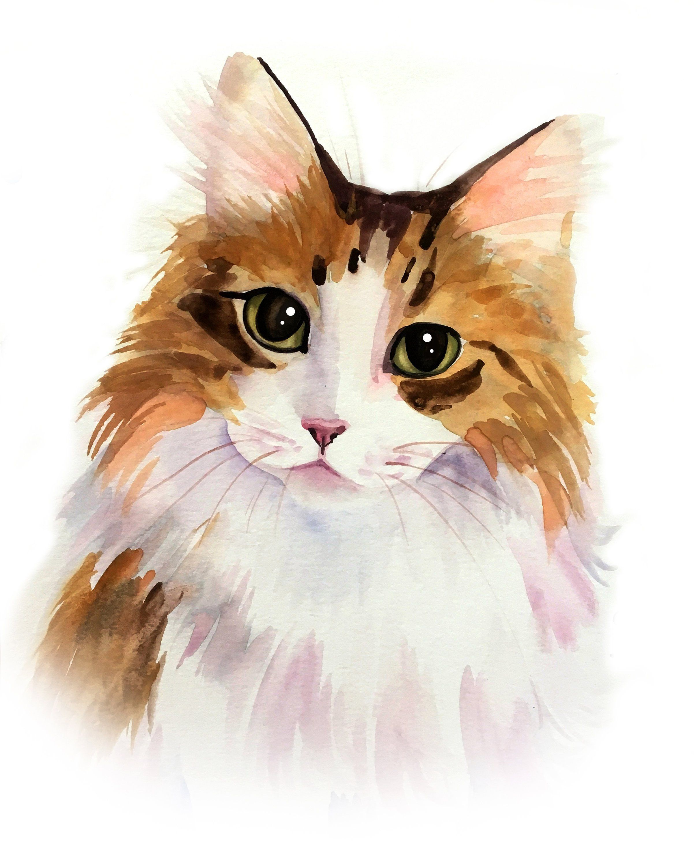 Cat Portrait Custom Cat Portrait Custom Pet Portrait Watercolor