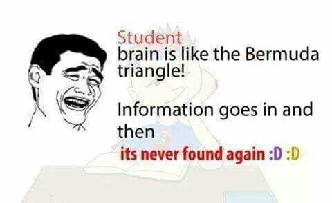 Its True Teacher Quotes Funny Student Jokes Exams Funny