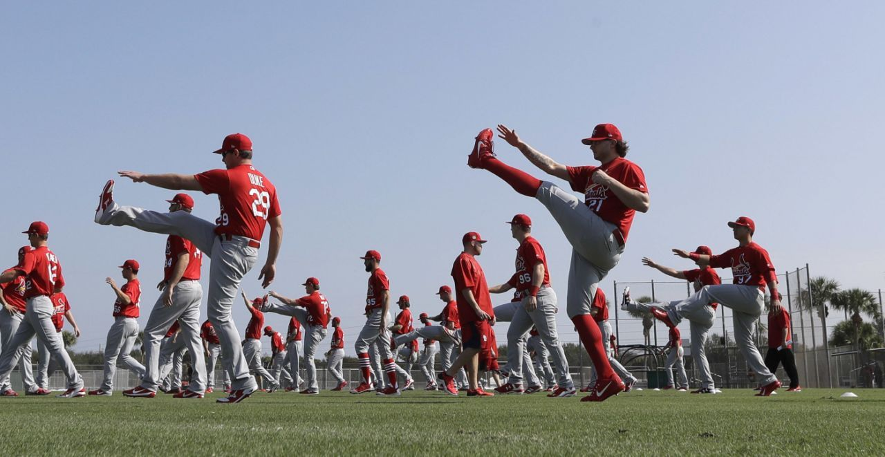 Baseball season is here! Here are the spring training