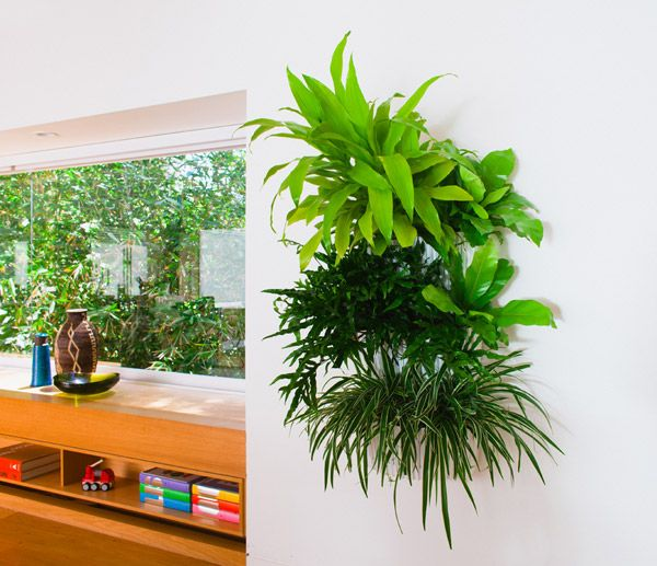 Living Wall Planter   Indoor/Outdoor Hanging Planter | Woolly Pocket