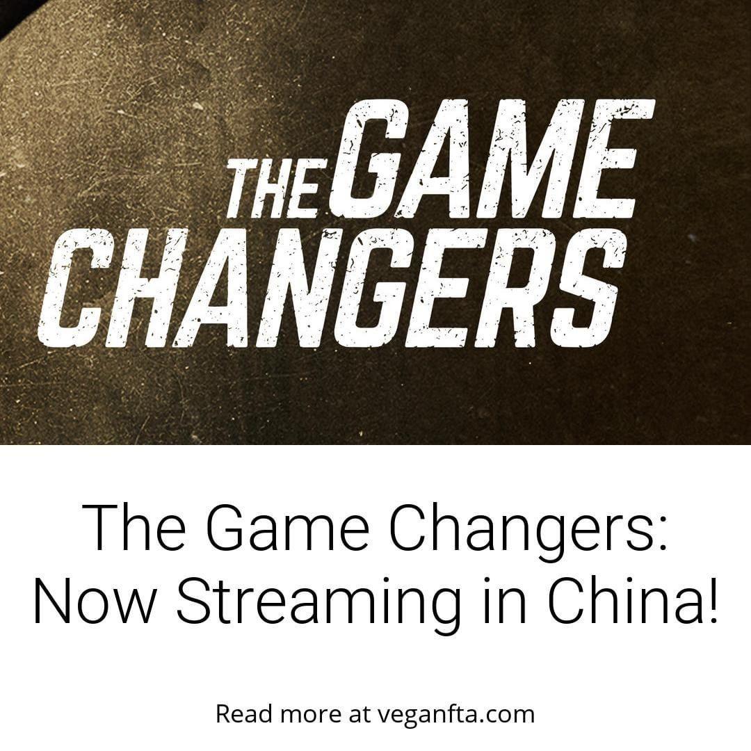 Login Instagram Vegan News Going Vegan Plant Based