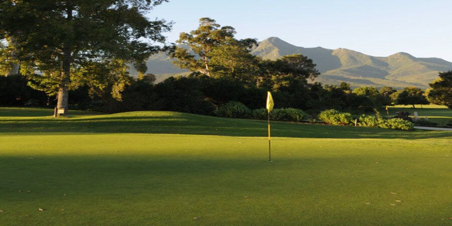 27++ Golf specials kzn viral